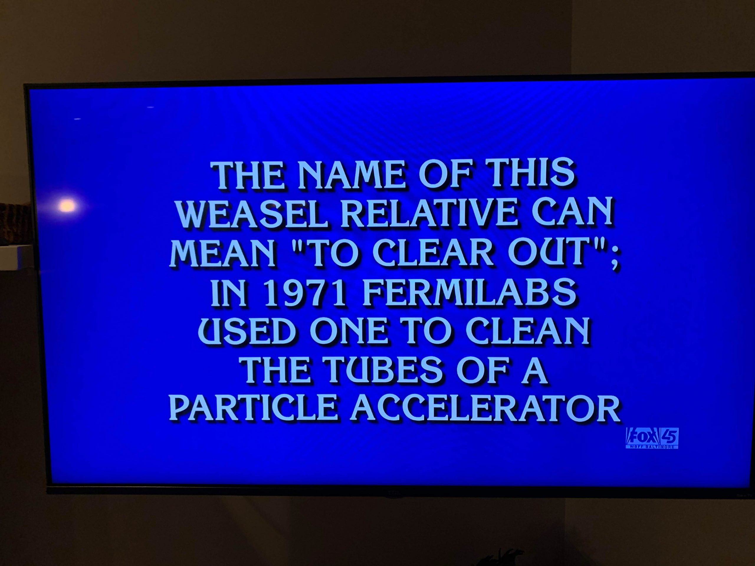 """<a href=""""https://history.fnal.gov/felicia.html"""">""""What is a ferret?""""</a> was a Jeopardy! question on Jan. 9, during the Greatest of All Time tournament. Note that there is only one Fermilab. everyday objects Photo: Bo Hammer"""