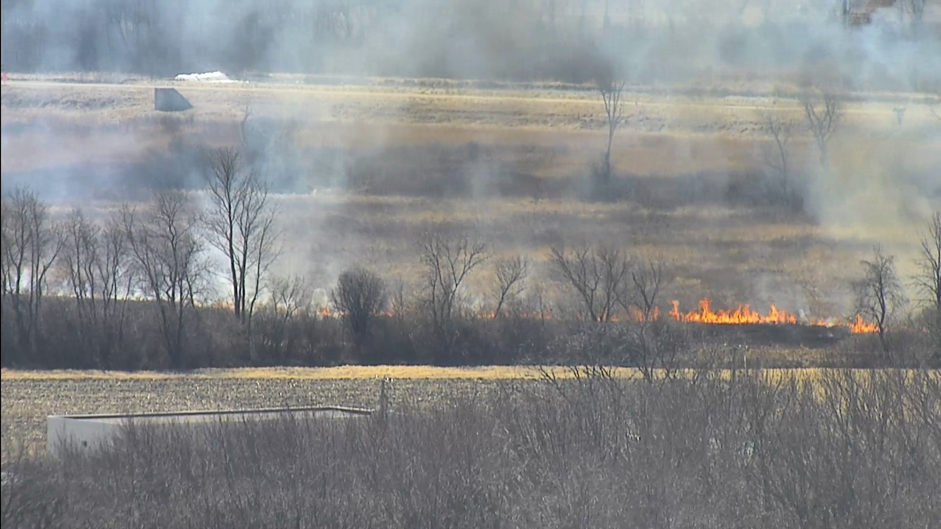 Fermilab Roads and Grounds personnel burn Prairie Plot 12 inside the Main Injector. nature, landscape, prairie, grass, fire, sky, plant, tree Photo: Lori Limberg