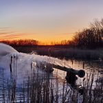 "The photographer captured this sunset and the MI60 cooling spouts in Cooling Pond ""A"" on March 4. nature, landscape, sunset, water, pond, sky, winter Photo: Kelly Sedgwick"
