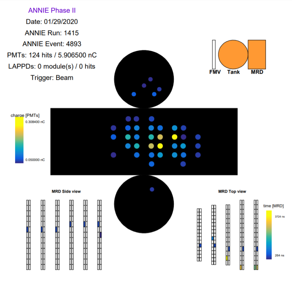 The cylindrical tank containing the doped water and photomultiplier tube array is shown unfolded: The sides of the tank appear as a large rectangle, and the circular top and bottom arrays are shown as circles. Each filled color circle represents a photosensor that was hit by Cherenkov light in time with a neutrino beam, with the color scheme proportional to the amount of light (yellow is a high light level, purple is a low light level).