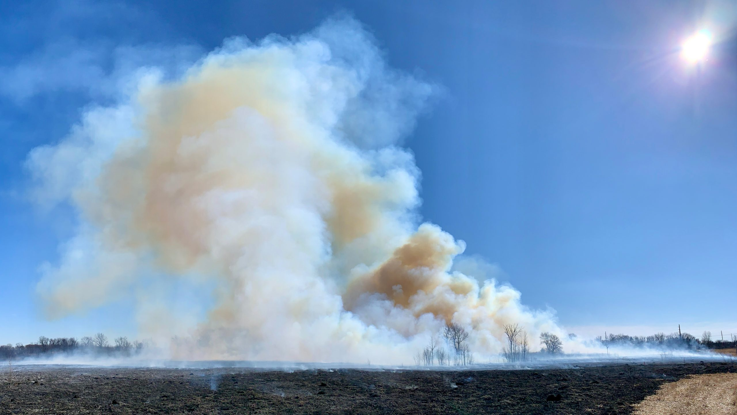 Fermilab Roads and Grounds conducts a prairie burn inside the Main Injector on March 5. The trees on the right side of the plume are 20-plus feet tall. nature, landscape, fire, prairie, sky, sun Photo: Marty Murphy