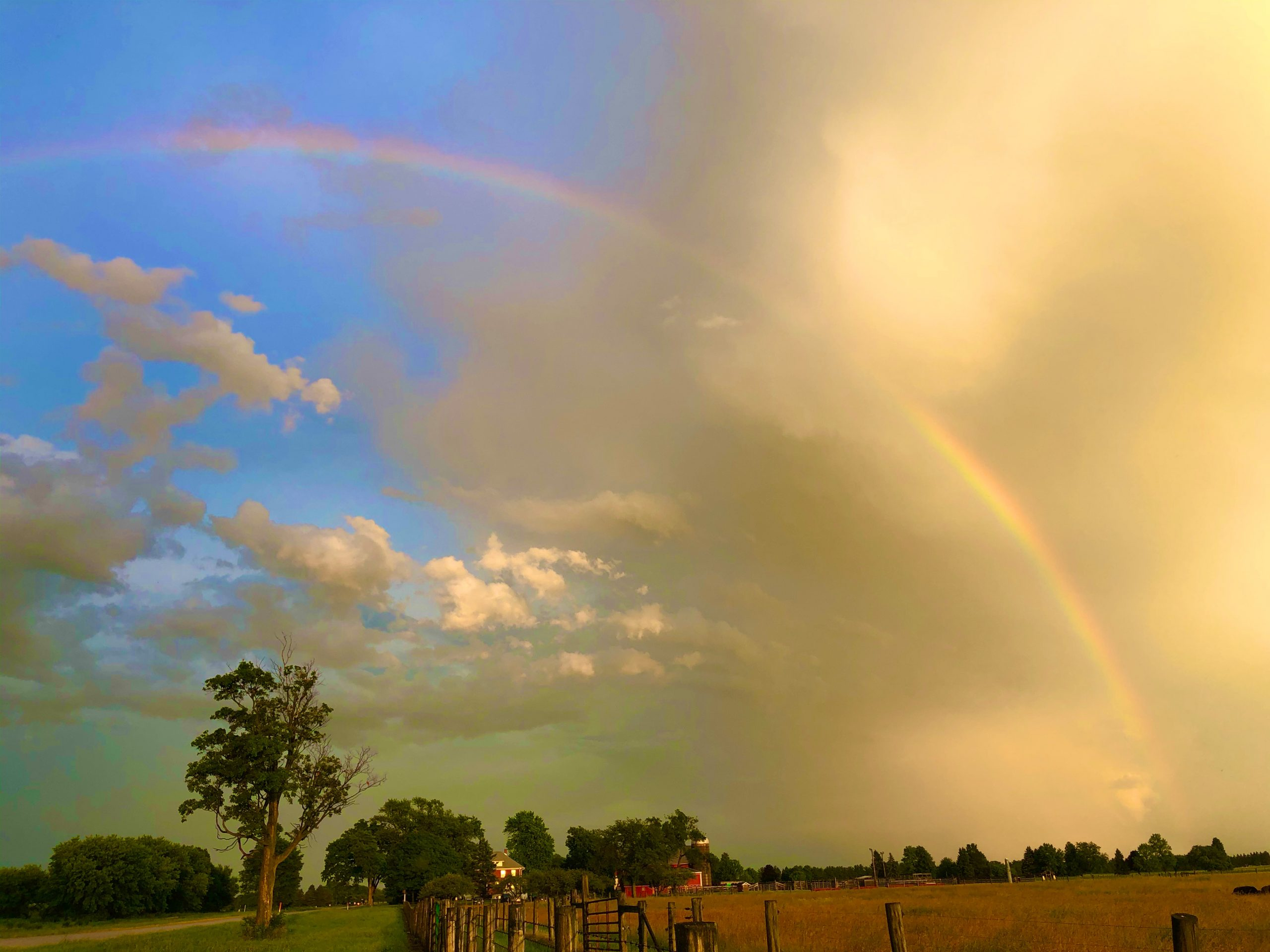 Clouds appear to make way for the arc. nature, landscape, sky, storm, rainbow, cloud, prairie, pasture, plant, tree, grass Photo: Mark Knable