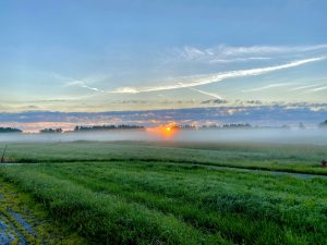 There is a struggle between the sun and the clouds. nature, landscape, sun, sunrise, cloud, sky, prairie, plant, grass Photo: Zubair Dar
