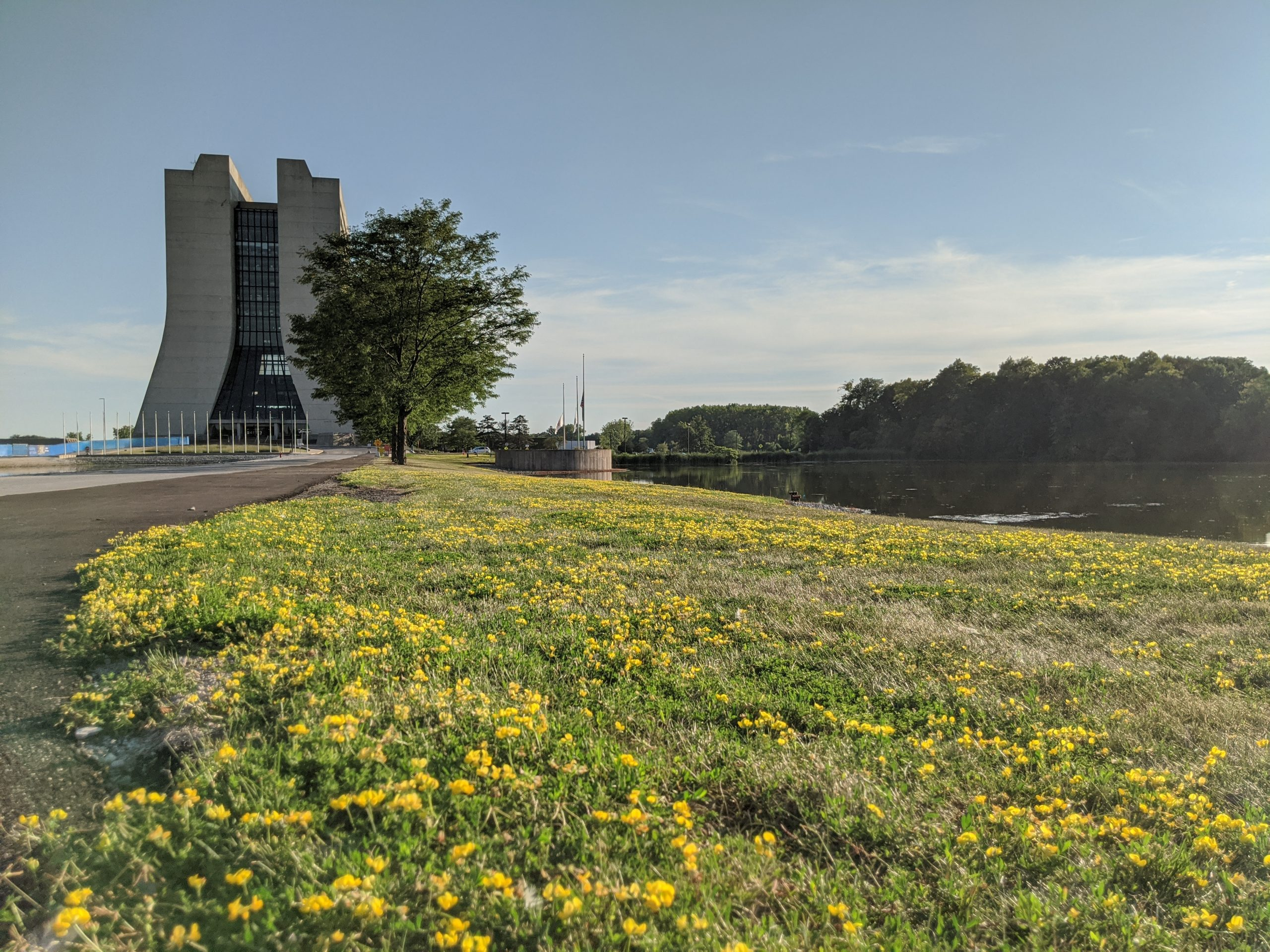 On Aug. 12, Wilson Hall is seen at the edge of summer and a field of bird's foot trefoil. nature, landscape, prairie, flower, plant, sky, building, Wilson Hall, lake, water, summer, pond, bird's foot trefoil, flower Photo: Valerie Higgins