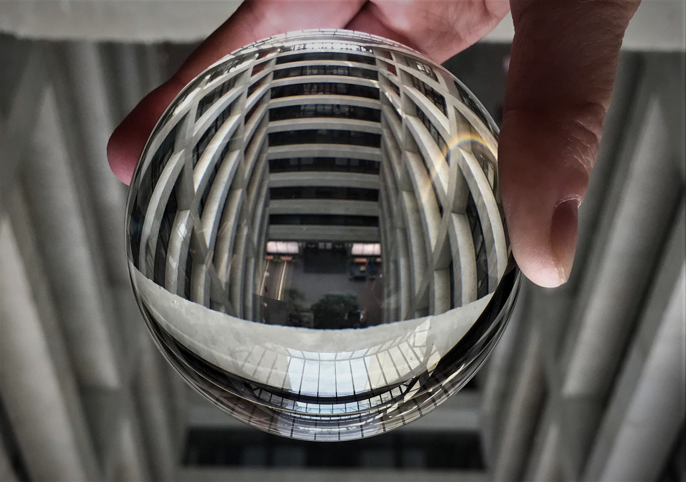 Wilson, Wilson, through a ball, who's the fairest of the halls? everyday objects, Wilson Hall, building Photo: Donna Iraci