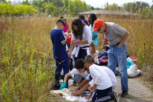Students from Cowherd Middle School visit Fermilab on Oct. 5, 2017. people, STEM, student, ecology, prairie, education, outreach Photo: Leticia Shaddix