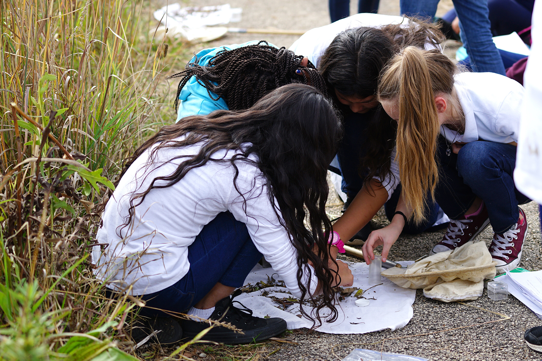 The kids learn about insects. nature, ecology, prairie, STEM, education, outreach, people Photo: Leticia Shaddix