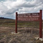 A sign marks the trailhead of a restored prairie and savanna on an overcast day in 2018. campus, landscape, cloud, prairie, everyday objects, grass, plant, nature Photo: Leticia Shaddix