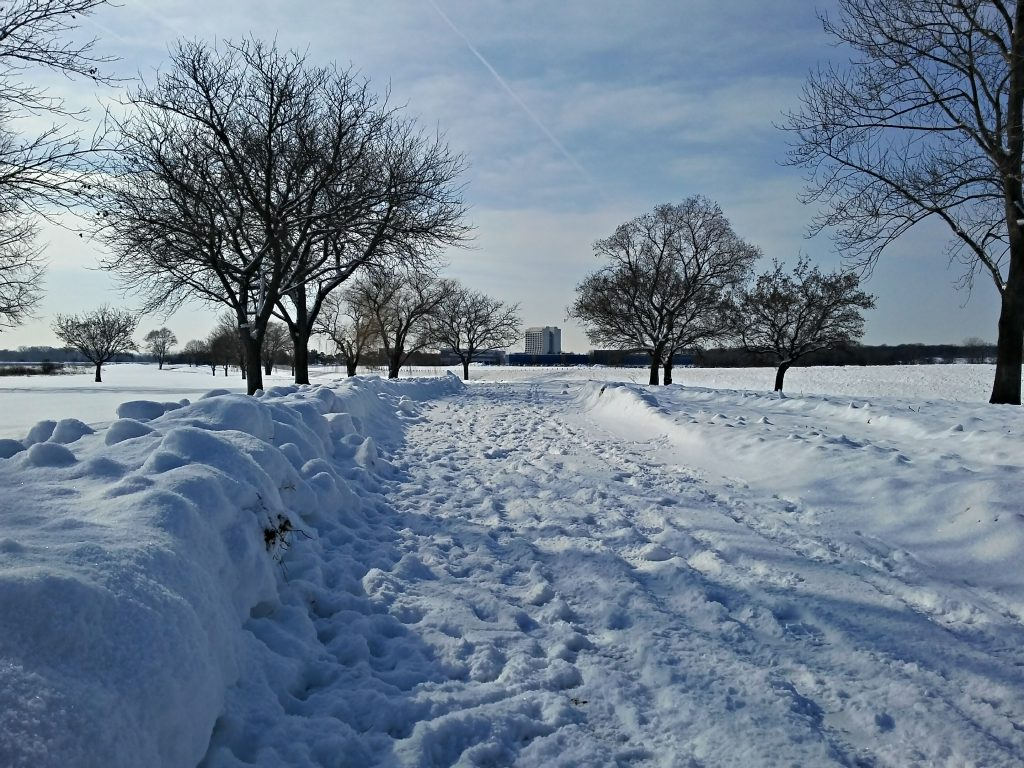 In January, snow accumulates on campus paths, despite earlier clearing. snow, road, campus, sky Photo: Krzysztof Kompiel