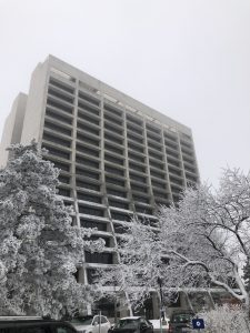 On Jan. 4, hoarfrost covers trees and snow dusts the roofs of cars outside Wilson Hall. frost, snow, Wilson Hall, campus, winter, weather sky, fog Photo: Laurie Pederson