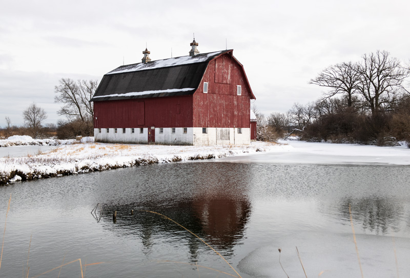 In January 2021, the gray sky makes the red barn on Outer Ring Road bolder but doesn't it keep it from reflection. barn, pond, winter, snow, campus, landscape Photo: Ryan Postel