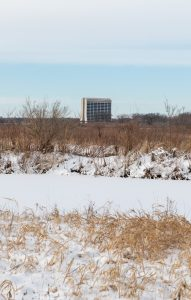 On Jan. 27, 2021, Wilson Hall appears to be in miniature amidst the snow and prairie grasses. nature, campus, Wilson Hall, grass, sky, landscape, campus, snow, winter Photo: Ryan Postel