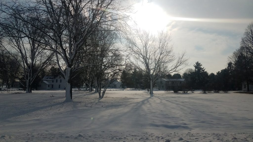 In the sky, the sun is a blinding white behind thin white clouds. Several light-colored two-story buildings are in the midground to background. Bare trees stand in front.