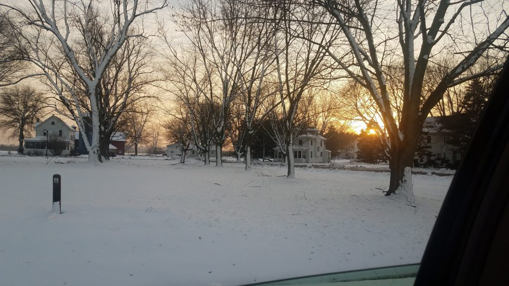 Another shot of houses behind trees covered in snow, the sun setting behind them.