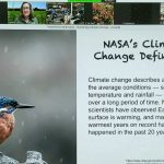 """A screen grab of a presentation on Zoom. The presentation slide has on the left a small bird with a longish black beak speckled blue feathers and a red cheek and belly balancing on a stick in precipitation. The text reads: """"NASA's Climate Change Definition: Climate change describes a change in the average soil conditions — such as temperature and rainfall — in a region over a long period of time. NASA scientists have observed Earth's surface is warming, and many of the warmest years on record have happened in the past 20 years."""" Across the top, a dog, a woman in a green field, the inside of two offices, and avatar of plants."""