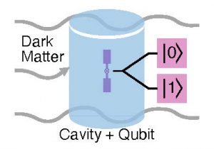 The blue cylinder in this diagram represents a superconducting microwave cavity used to accumulate a dark matter signal. The purple is the qubit used to measure the state of the cavity, either 0 or 1. The value refers to the number of photons counted. If the dark matter has successfully deposited a photon in the cavity, the output would measure 1. No deposition of a photon would measure 0. Image: Akash Dixit, University of Chicago