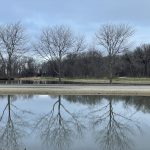 On March 26, 2021, three trees become six with the help of the reflection pool and pond in front of Wilson Hall. campus, nature, tree, pond Photo: Ryan Postel