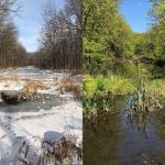 Two side-by-side photos of a creek and the banks. On the left, covered in snow; on the right, covered in green.