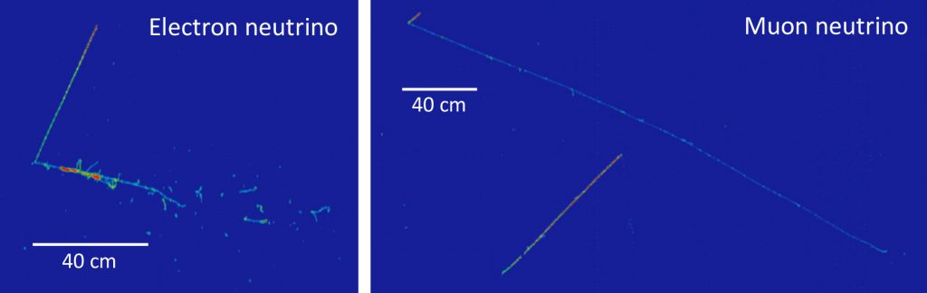 Two graphs on bright blue background with different scales of 40 centimeters. The one of the left is labeled electron neutrino. The chart on the right is labeled muon neutrino.