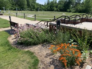 Pale purple coneflowers and another orange flower bloom in a bed along a staircase and in front of a park bench. A series of walking paths are visible in the field behind on a sunny day.