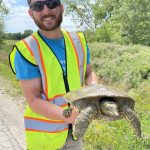 A man wearing sunglasses, a backwards cap and a reflective yellow vest holds a turtle. He has one hand under the shell and one holding the back of the shell. Its mouth cannot reach his hands.
